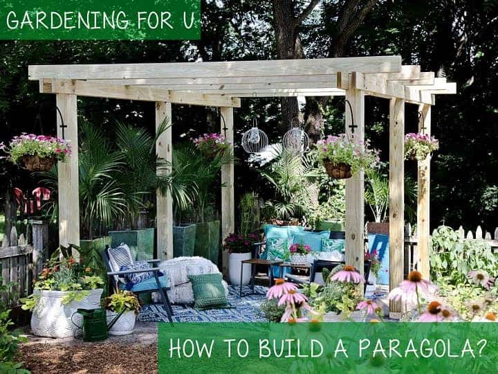 How to build a paragola