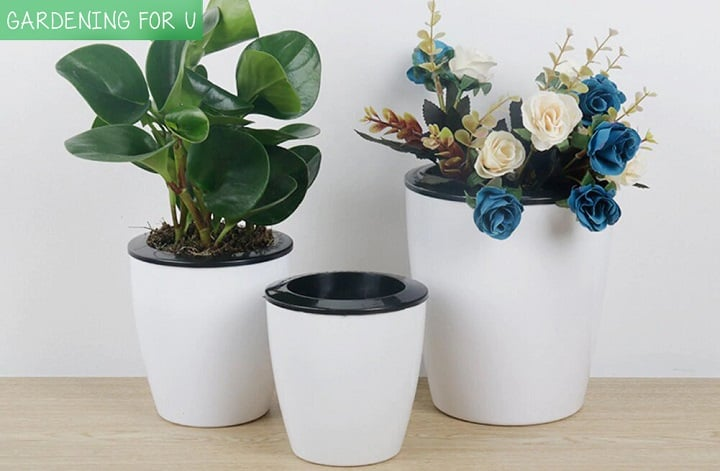 Why a gardener will choose self watering pots: