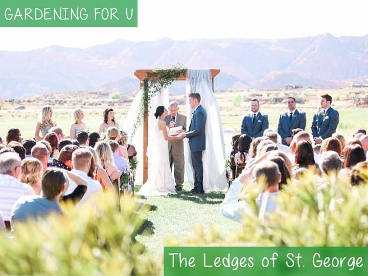 The Ledges of St. George