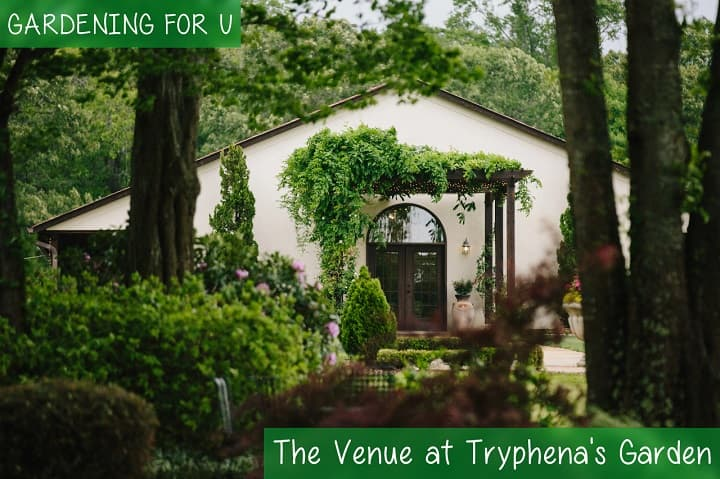 The Venue at Tryphena's Garden