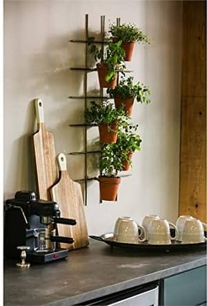 Cape Craftsmen Metal Wall Plant Holder with 6 Terracotta Pots