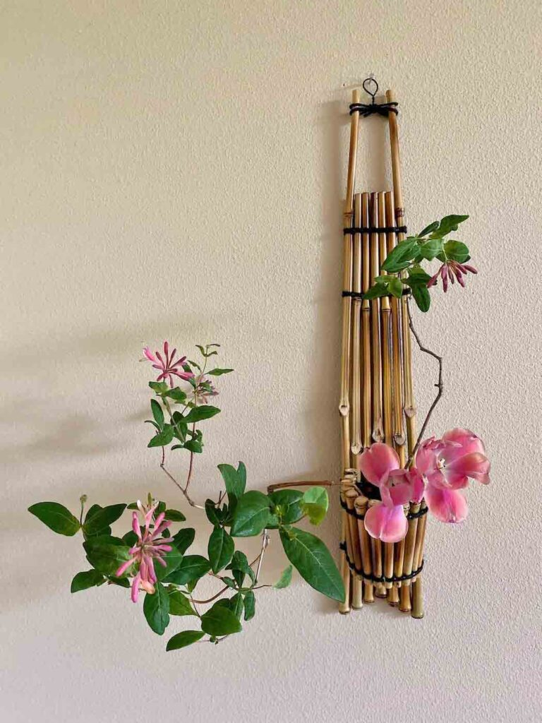 Ikebana Dreaming Vase, Japanese Bamboo Wall Hanging Container (Clear)